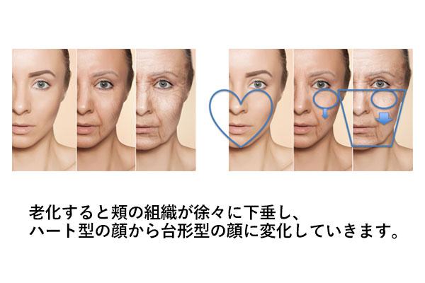 老化のメカニズムにこだわったあなたに合う治療法を提案